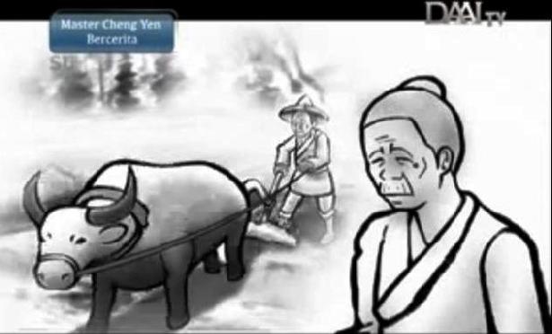 Petani Tua Dan Kerbau Yayasan Buddha Tzu Chi Indonesia
