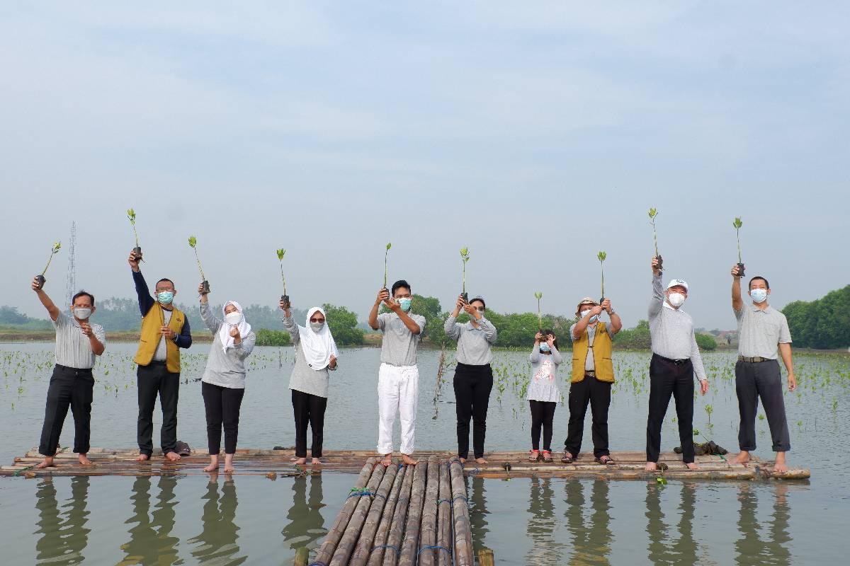 Menjaga Bumi dengan Menanam Mangrove