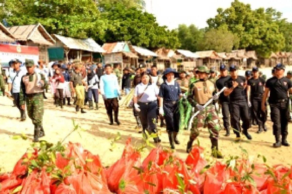 Mencegah Erosi dan Abrasi Lewat Penanaman Mangrove