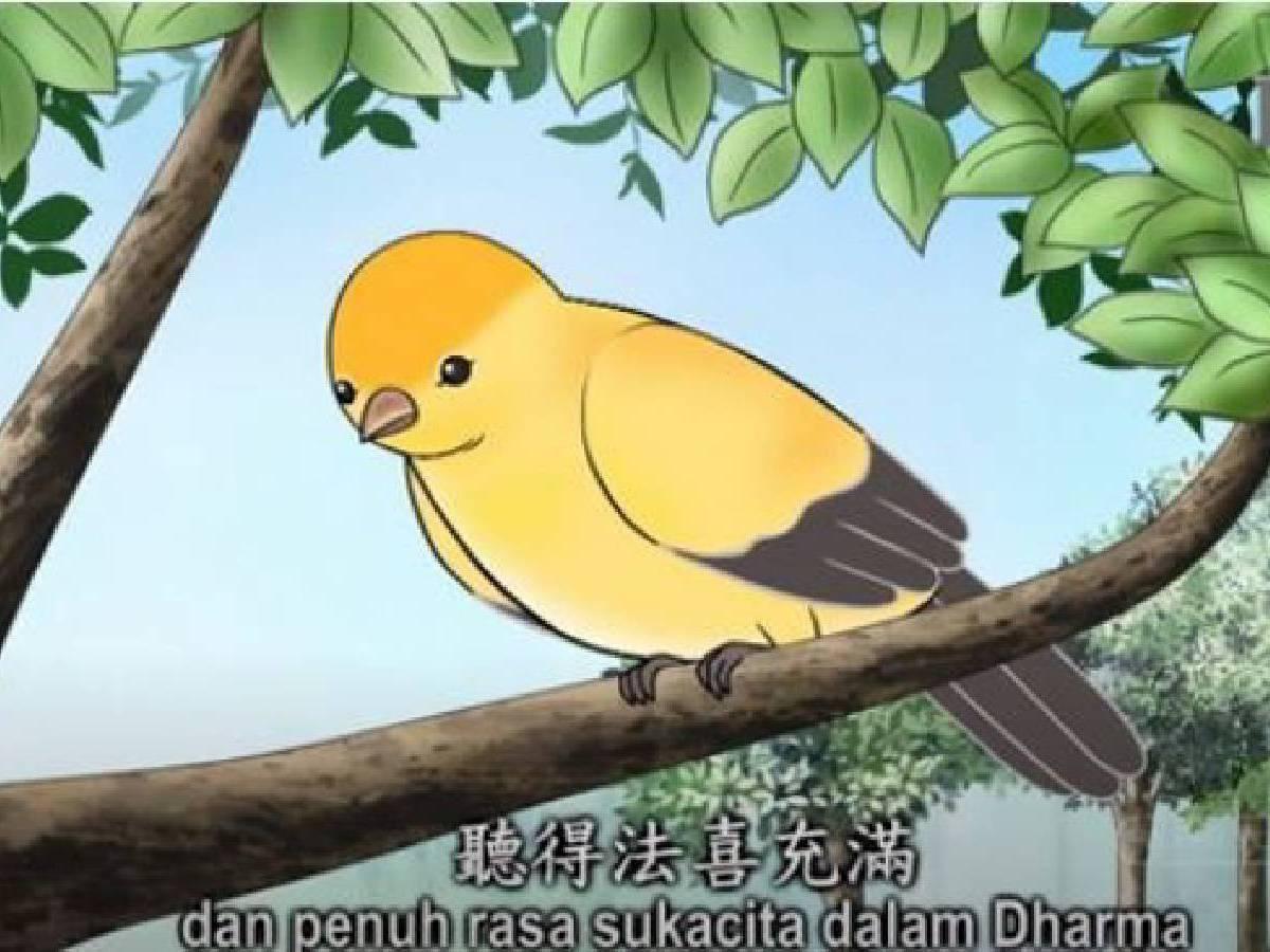 Master Bercerita: Burung yang Mendengarkan Dharma