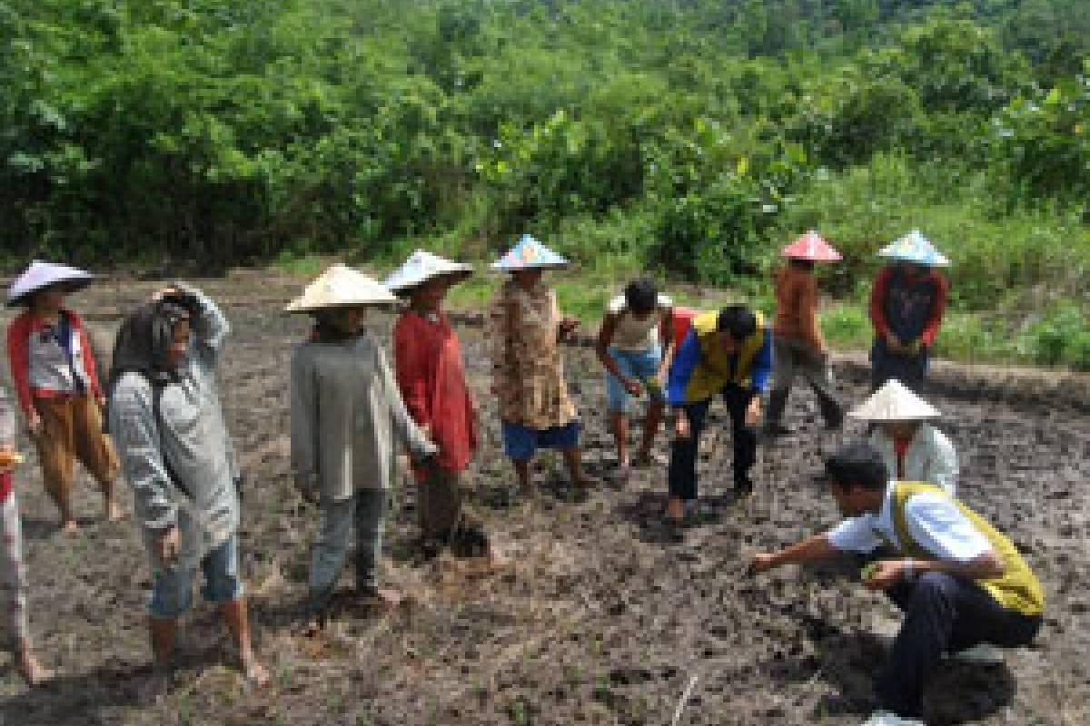 Program Pertanian Amal, Menuju Pertanian Berkelanjutan (Bag 1)